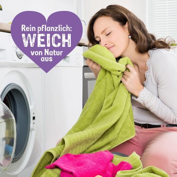 Lavendel Waschmittel Lavendel Duft für die Wäsche